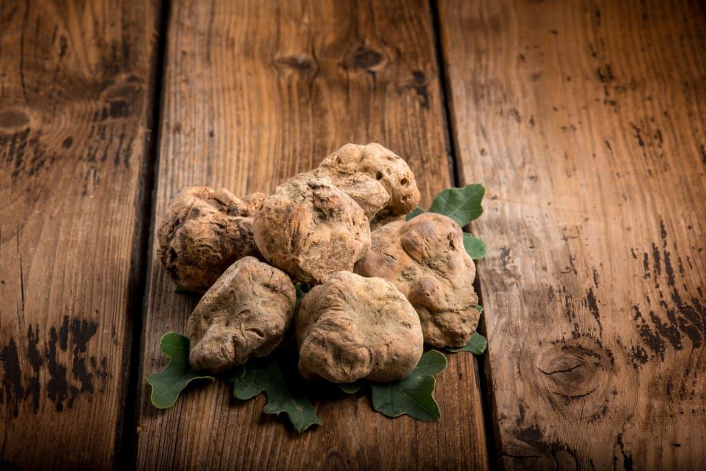 Group,of,white,truffle,over,wood,background