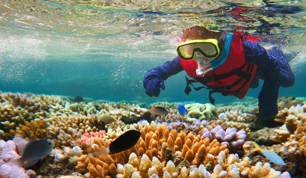 Australian,person,snorkeling,scuba,diving,with,life,jacket,vest,and