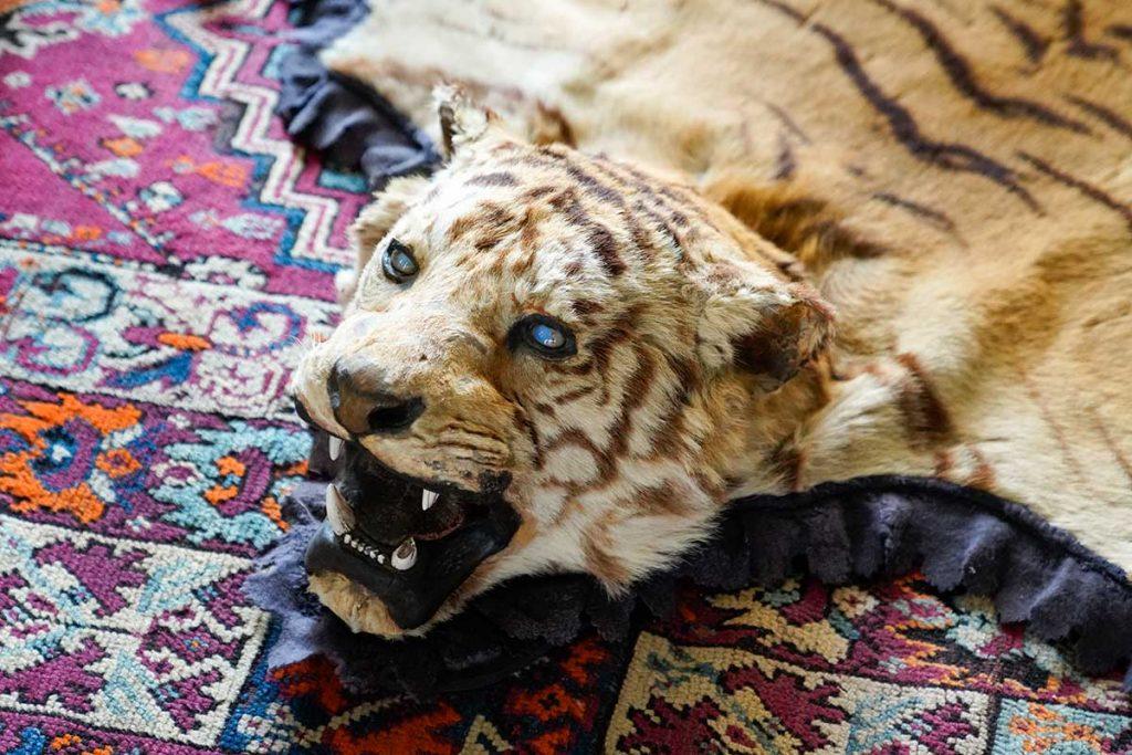 Lakberendezes Allatvedelem Tigris Bor Szonyeg