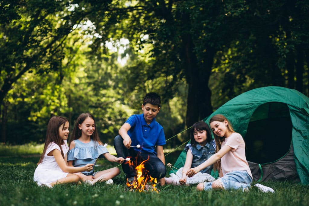 Group Of Kids In Forest By Bonfire With Mushmellows
