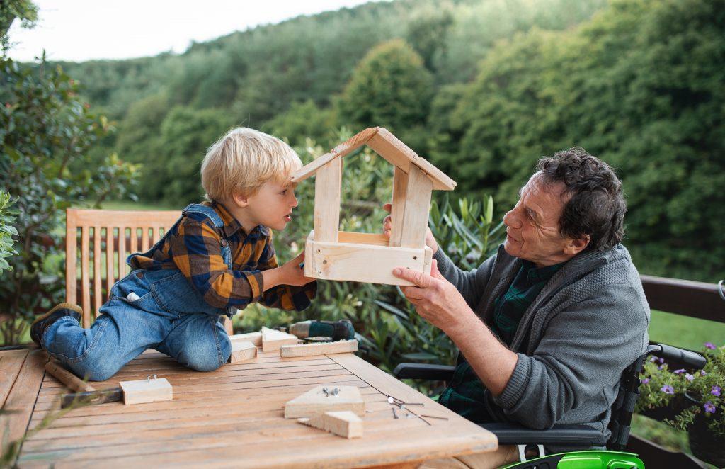 Small,boy,with,senior,grandfather,in,wheelchair,constructing,birdhouse,,diy