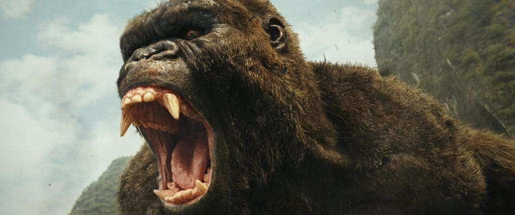 2017 Kong: Skull Island Movie Set