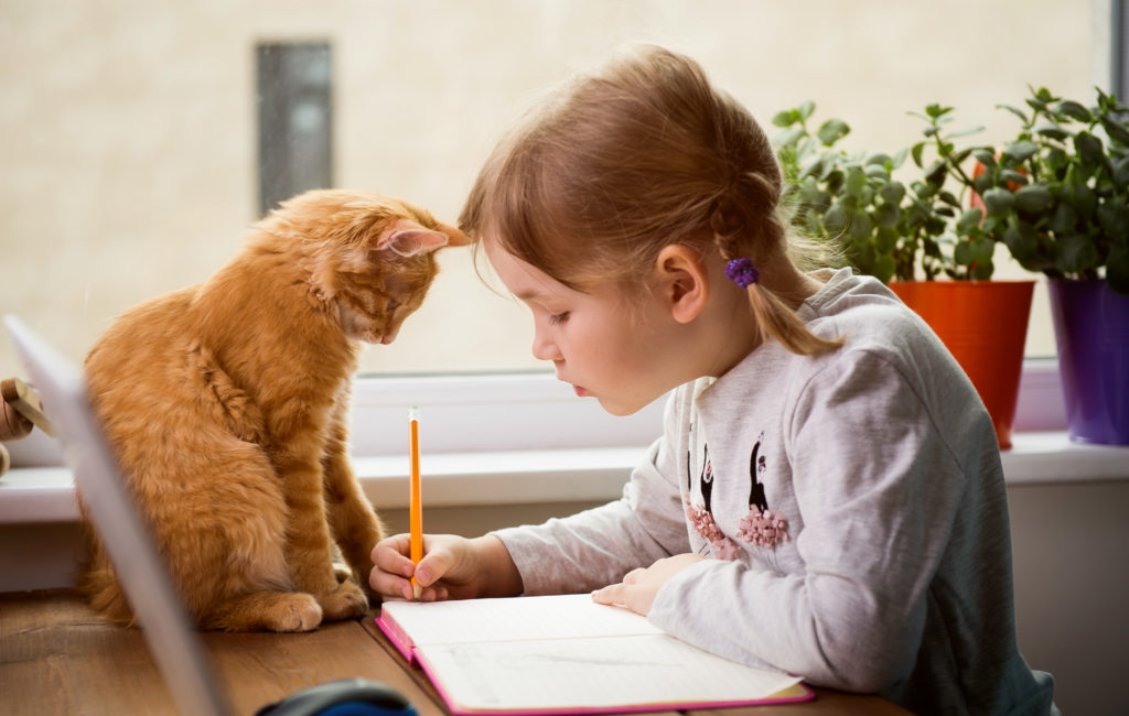 Educate,at,home.,child,girl,make,homework,with,pet,cat.