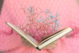 Holly Ringland Szirmokba zárt szavak könyv