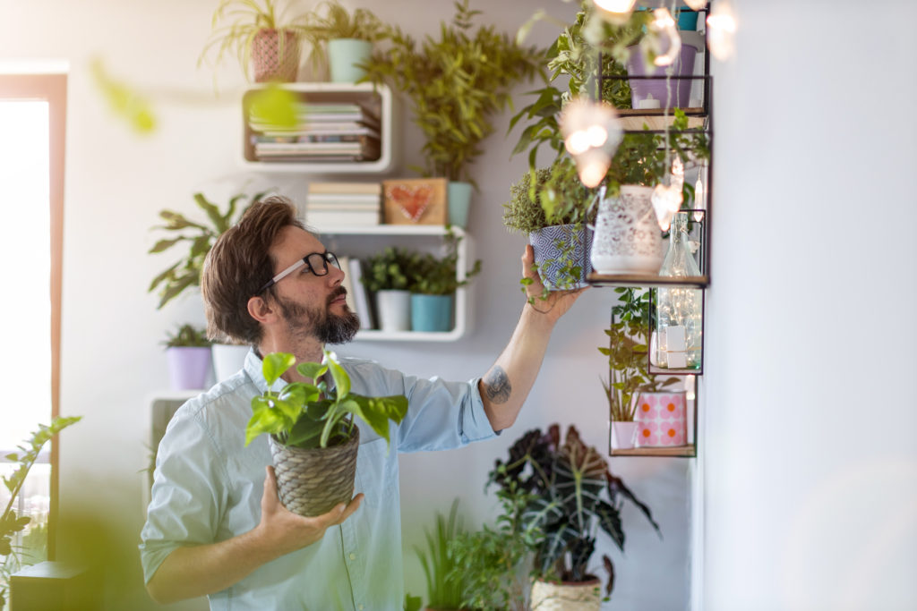 Man,taking,care,of,her,potted,plants,at,home