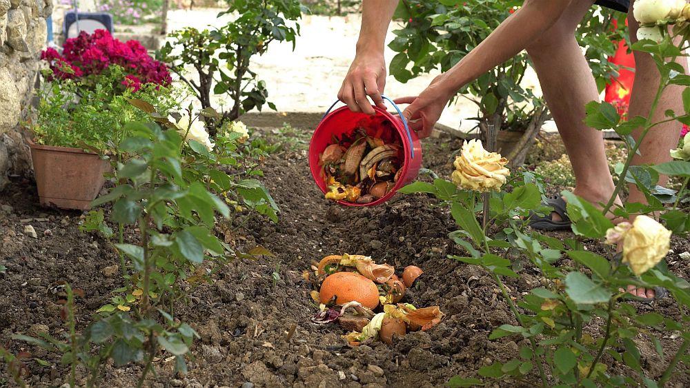 Composting,of,kitchen,waste.,a,man,buries,fruit,,vegetables,peels