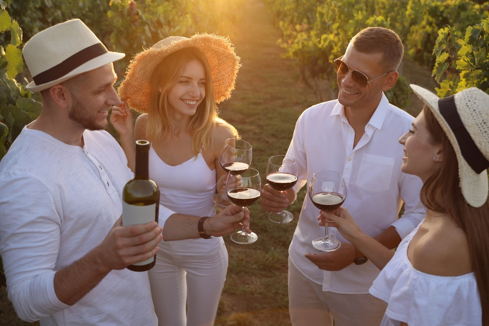 Friends,tasting,red,wine,in,vineyard,on,sunny,day