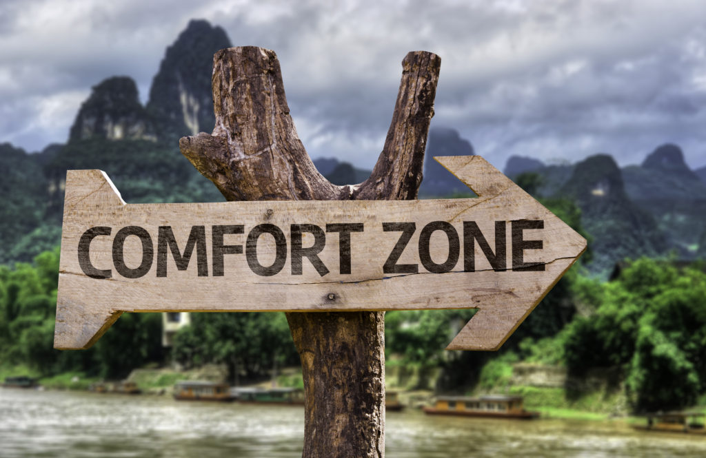 Comfort,zone,wooden,sign,with,a,forest,background