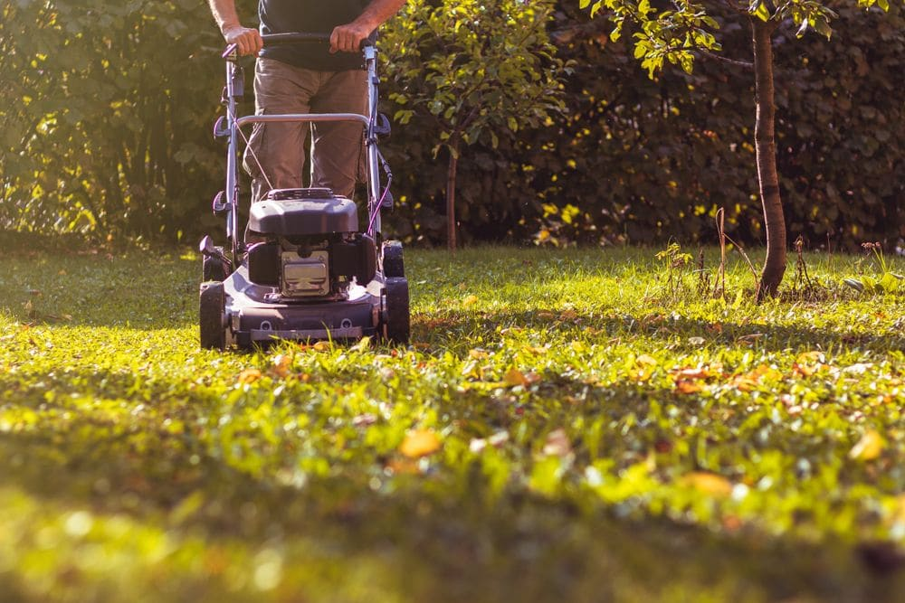 Mowing,the,grass,with,a,lawn,mower,in,garden,at